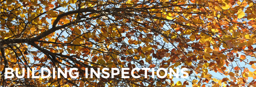 Building Inspections Banner Fall.jpg