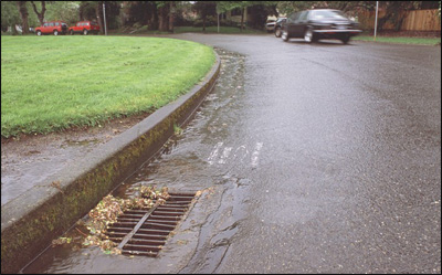 Storn drain on a street