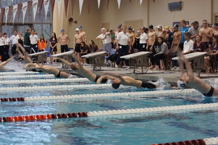 8 Swim Meet Start Web.jpg
